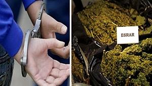 Şanlıurfa'da uyuşturucu çetesi çökertildi