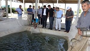 Ortadoğu'nun En Büyük Balık Üretim Tesisi Şanlıurfa'da