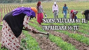 'Urfalı tarım işçilerine çifte standart uygulanıyor'