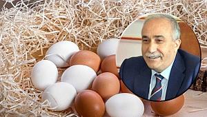 """Bakan Fakıbaba: """"Ülkemizde fipronilli yumurta tespit edilmemiştir"""""""