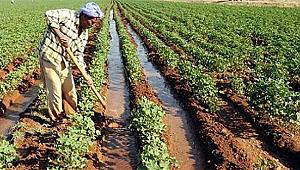 Çiftçilere fatura uyarısı