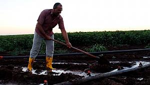 Gece sulaması çiftçinin kazancını yüzde 15 artırıyor