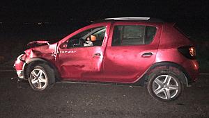 Siverek'te otomobil eşeğe çarptı: 1 yaralı
