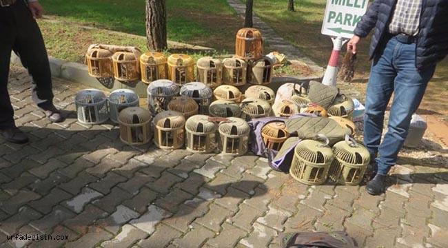 28 kınalı keklik doğaya bırakıldı