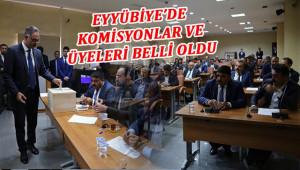 Eyyübiye belediyesinde komisyonlar oluştu