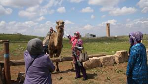 UNESCO adayı Harran turistlerle rengarenk