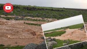 Viranşehir'i sel aldı