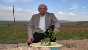 Urfa'da sonuç alınabilinir mi?