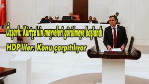 Urfalı Vekil ile HDP arasında Kürtçe diyalogu