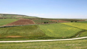 1 Milyon 294 Bin 458 Hektar Arazi Toplulaştırılıyor