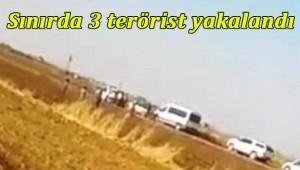Akçakale'de 3 terörist yakalandı