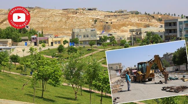 Eyyübiye'de yeşillendirme çalışmaları sürüyor