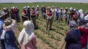 Jandarma, mevsimlik tarım işçilerini takip ediyor