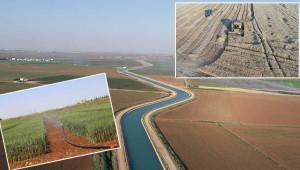 Sulama kanalları tarıma hayat veriyor