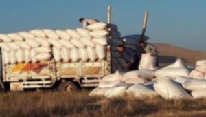 Urfalı işçilerin saman kavgası: 5 yaralı