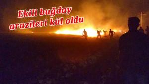 Yıldırım düştü, Tigem arazileri yandı