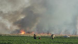 Yine yangın, yine Suriye sınırı