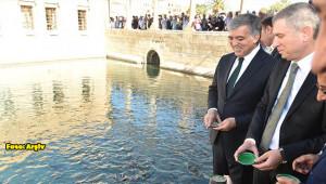 Abdullah Gül, Şanlıurfa'ya geldi