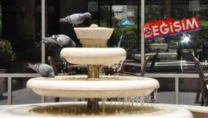 Güvercinlerin serinlemesi güzel kareler oluşturuyor