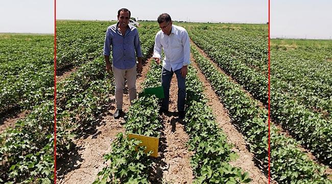 Suruç'ta çiftçiler bilgilendirildi