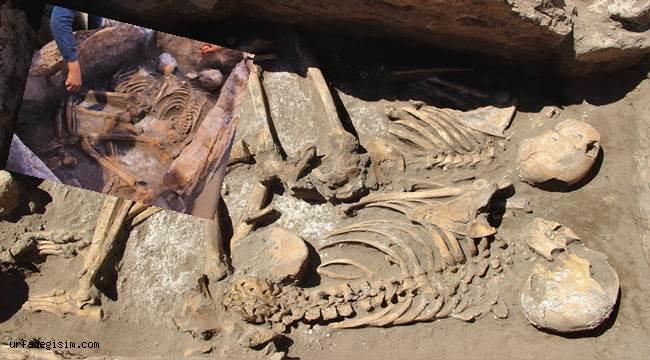 5 bin yıllık insan iskeletleri çıktı