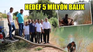 Fırat'a ve göllere yavru balık bırakılıyor