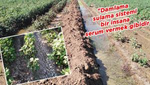 Salma sulama toprağa ve ürüne zarar veriyor