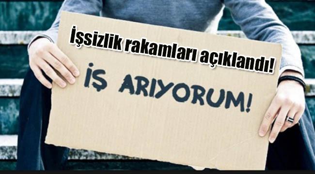 Türkiye'de ne kadar işsiz var?