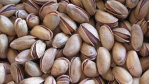 Urfa'da kavlak fıstık kaç liradan işlem gördü