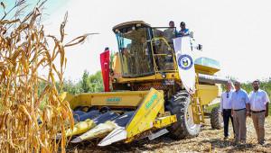 Bölgenin ilk mısır hasadı gerçekleşti