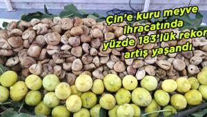 Çin'e rekor incir ihracatı gerçekleşti