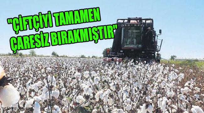 Pamuk üreticilerin sorunları Meclise taşındı