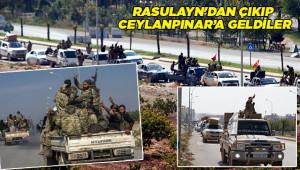 Suriye Milli Ordusu Urfa'ya geldi