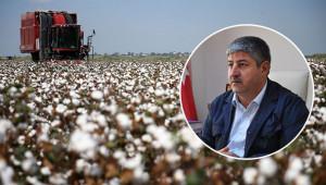 'Urfa'da 2 milyon 700 dönüm arazide pamuk ekiliyor'