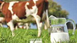 Çiftçilere yapılacak destek miktarı açıklandı