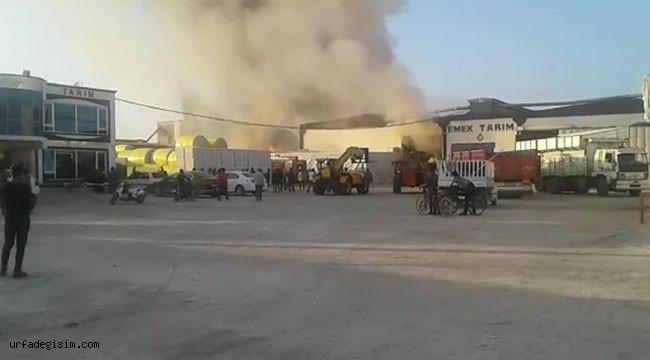 Fabrikadaki pamuk balyaları yandı