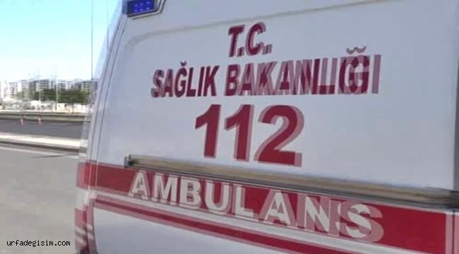 Şanlıurfa - Diyarbakır Yolunda Kaza