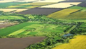 1 milyon dekardan fazla arazi dağıtıldı