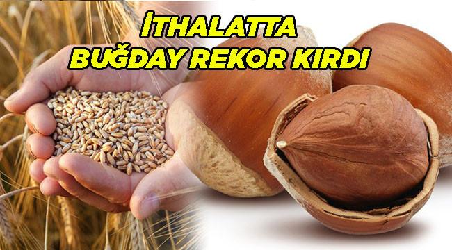 İthalatta buğday, ihracatta ise fındık öne çıktı