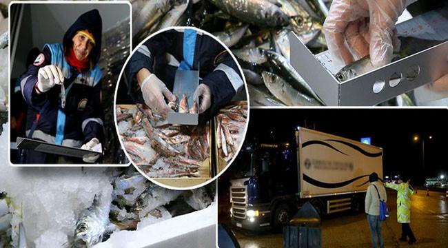 Kurallara uymayan balıkçılara ceza yağdı