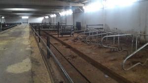 Çiftlik Bank vurgununda 5 kişi daha tutuklandı