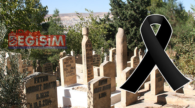 Urfa'da 5 vatandaş hayatını kaybetti