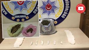 Uyuşturucu operasyonu: 9 tutuklu