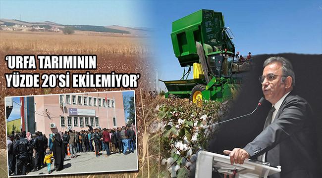 'Ekim alanları azalıyor; işsizlik artıyor'