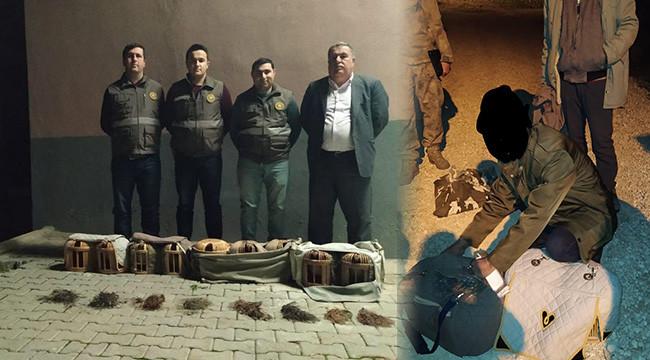 Kaçak avlanmış 9 kınalı keklik ele geçirildi