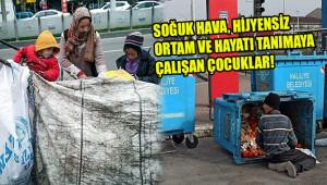 Kadınların kağıt toplama işine girmesi çocuklara zarar!