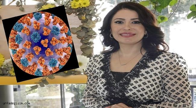 Korona ve influenza virüslerine etkisi