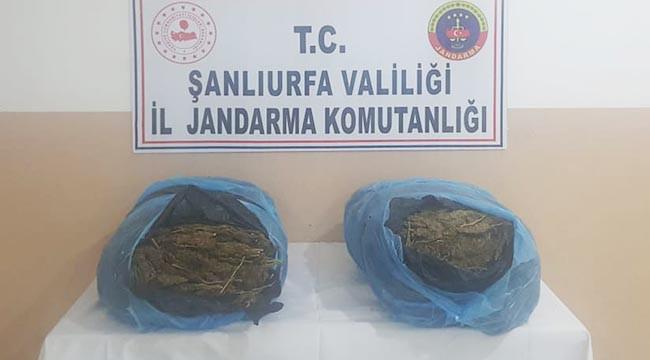 Şanlıurfa'da 21 kilogram esrar ele geçirildi