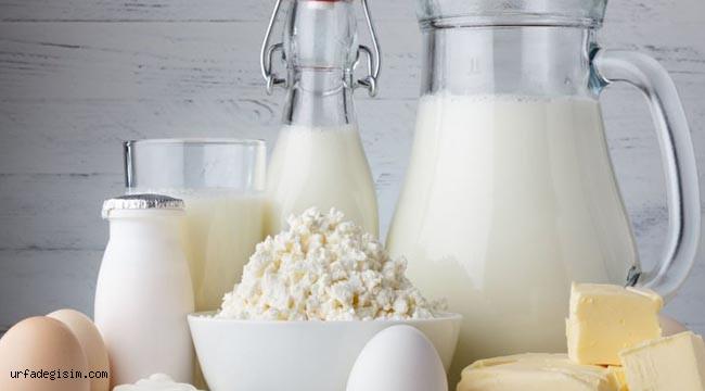Süt ve süt ürünleri üretimi verilerini açıklandı