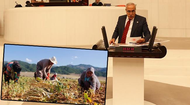 DEDAŞ ve DSİ çiftçinin ölüm fermanını yazıyor